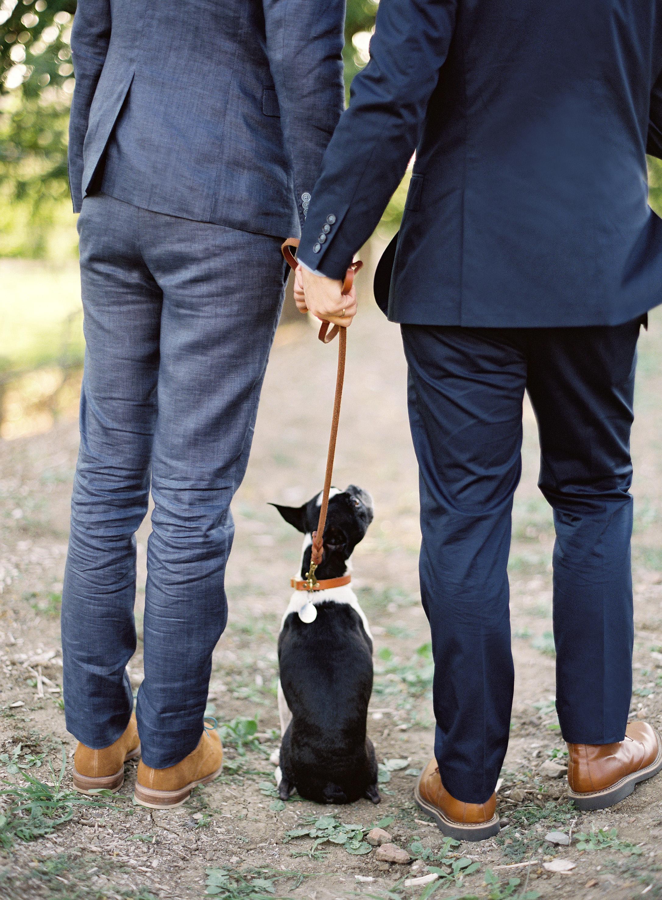 dog wedding leash grooms suits feet