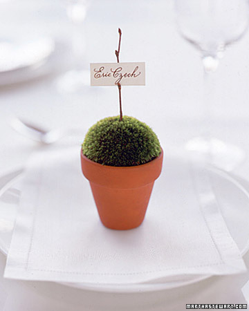 Terra-Cotta Pot Place Card