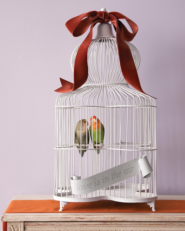 mwd104873_fall09_birds10.jpg