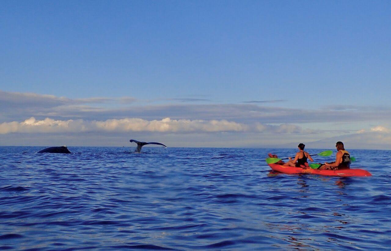 honeymooners guide hawaii hawaiian padde sports 0218
