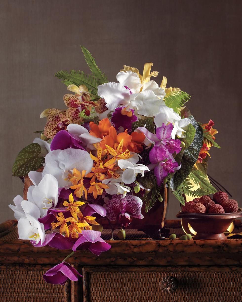 flowers-tropical-island-546-mwd108999.jpg