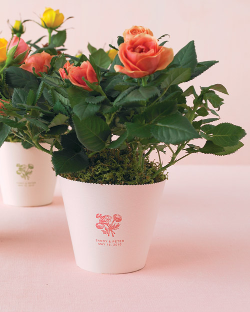Potted Rose Favors