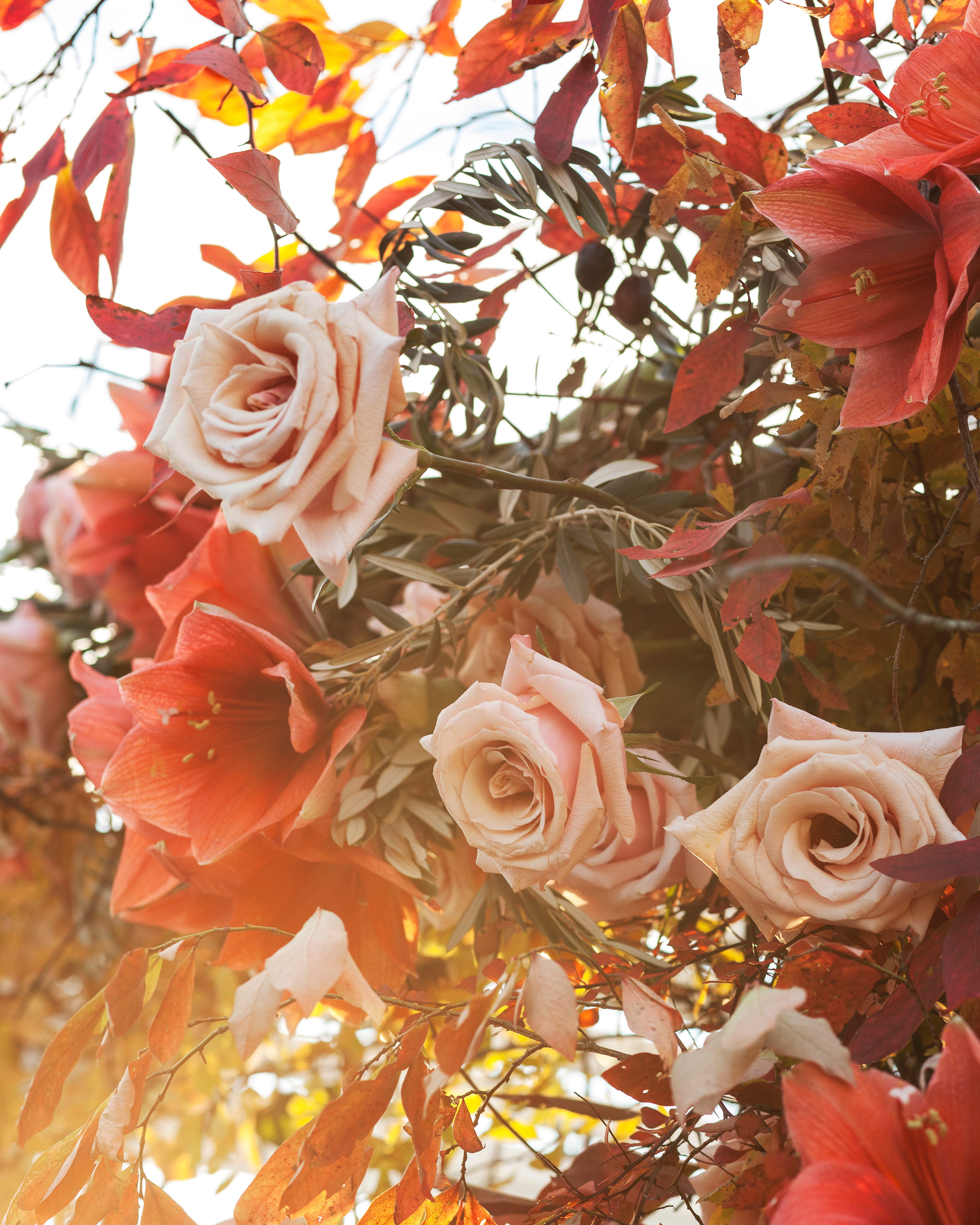 hanna-jimm-wedding-flowers-054-s111413-0814.jpg