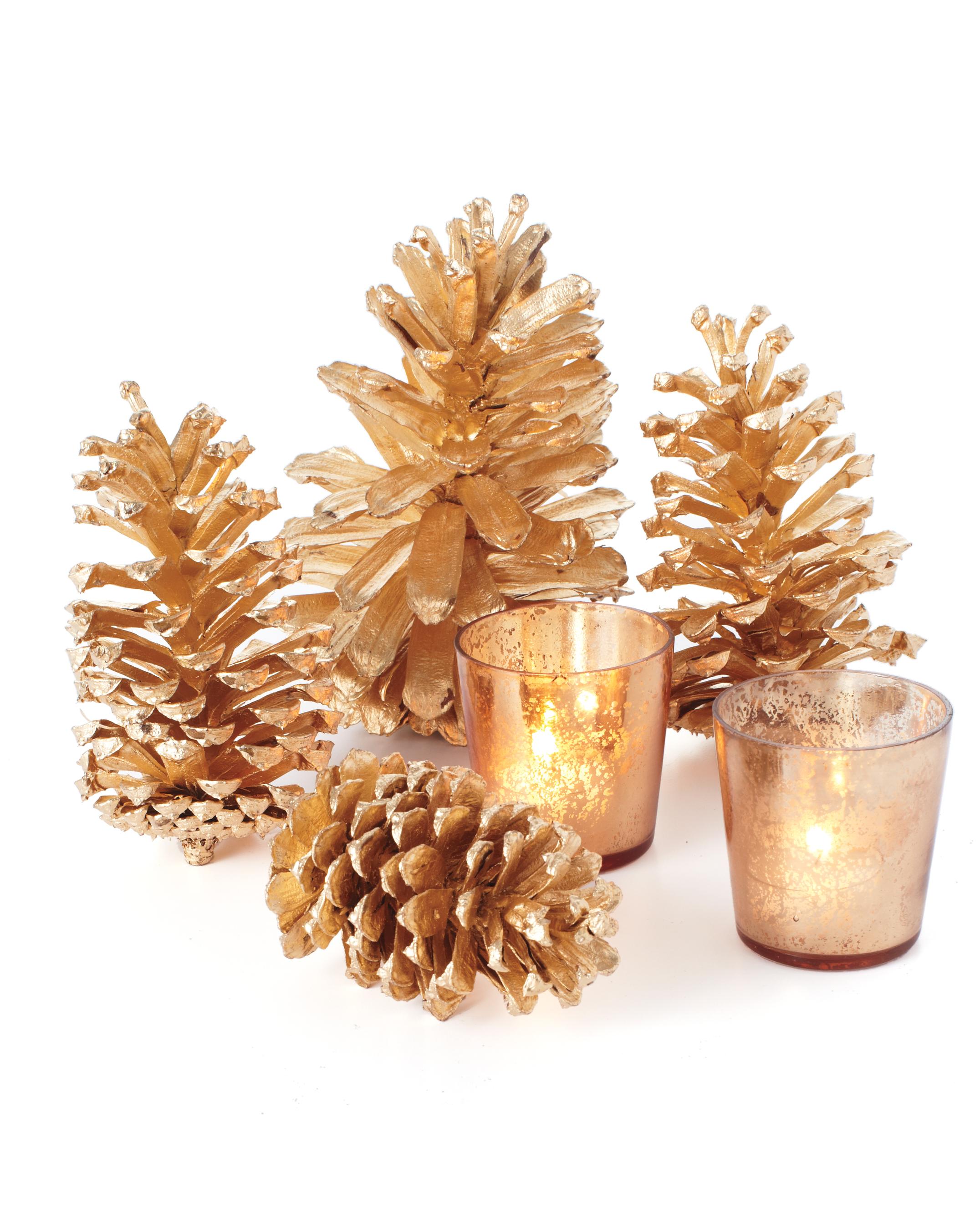 pinecones-172-mwd110671.jpg