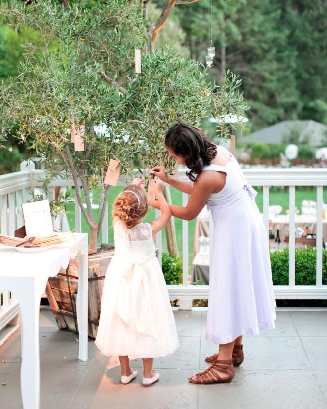 wedding-guest-book-alternative-olive-tree-messages-0416.jpg