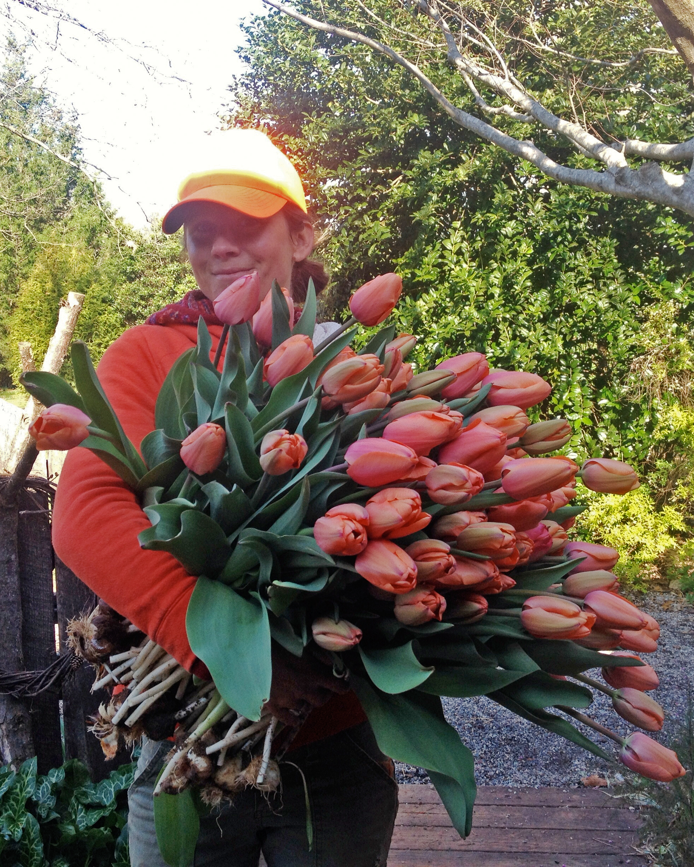 farmer-florists-mandy-oshea-moonflower-design-1214.jpg