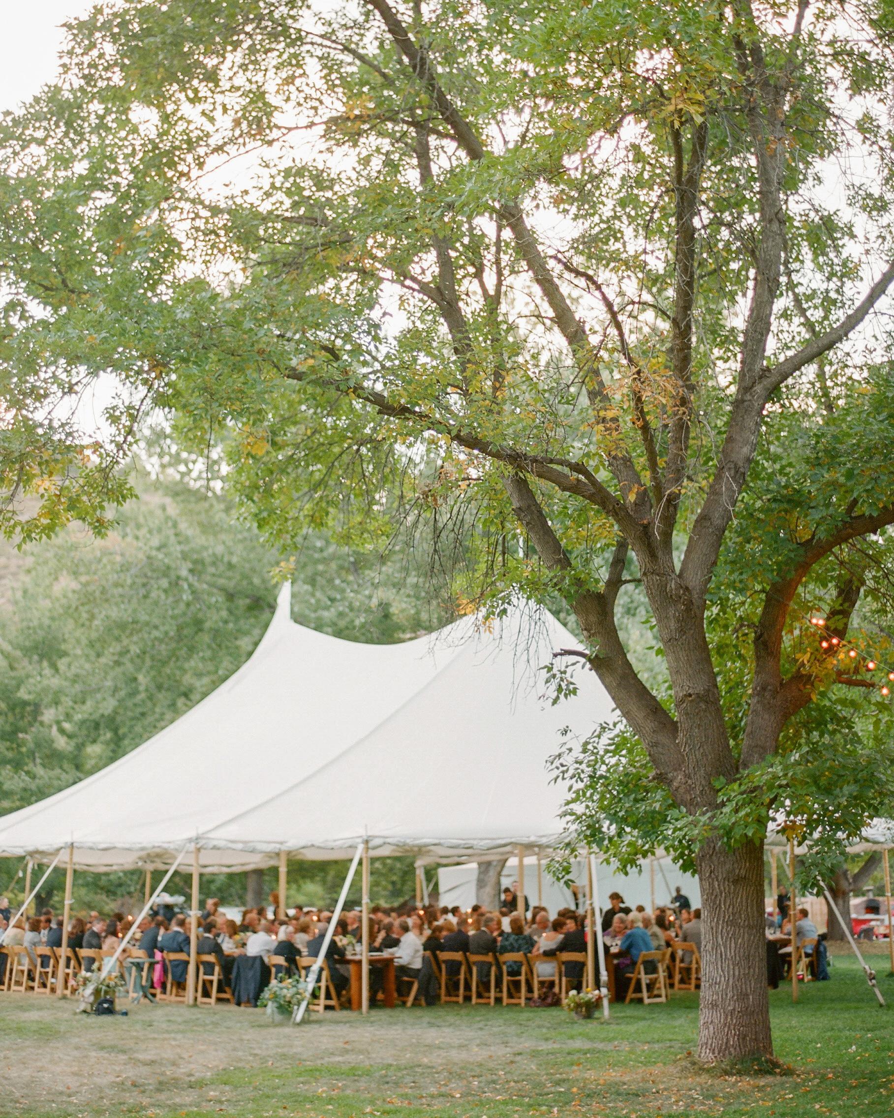lana-danny-wedding-tent-645-s111831-0315.jpg