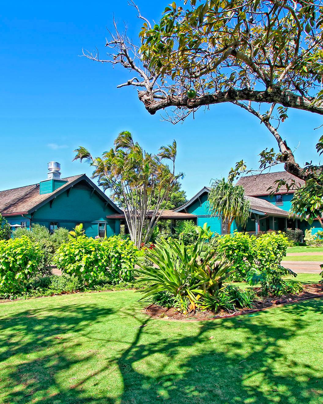 hawaii-hotels-lumeria-maui-0415.jpg