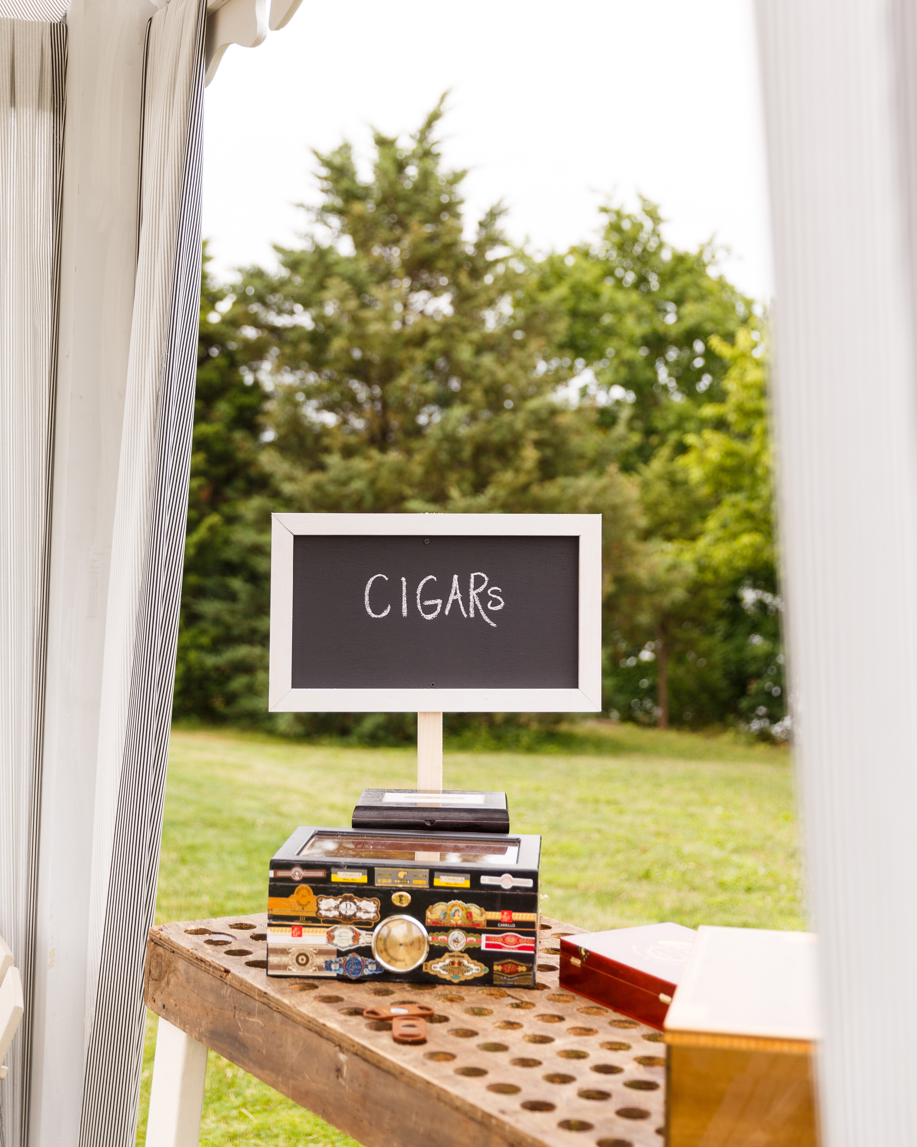 kristel-austin-wedding-cigars-0893-s11860-0415.jpg