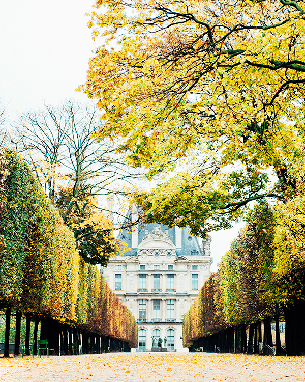 15 Unexpected Places to Propose in Paris