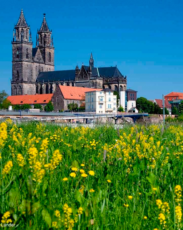 honeymoon-cruise-croisieurope-magdeburg-cathedral-1015.jpg