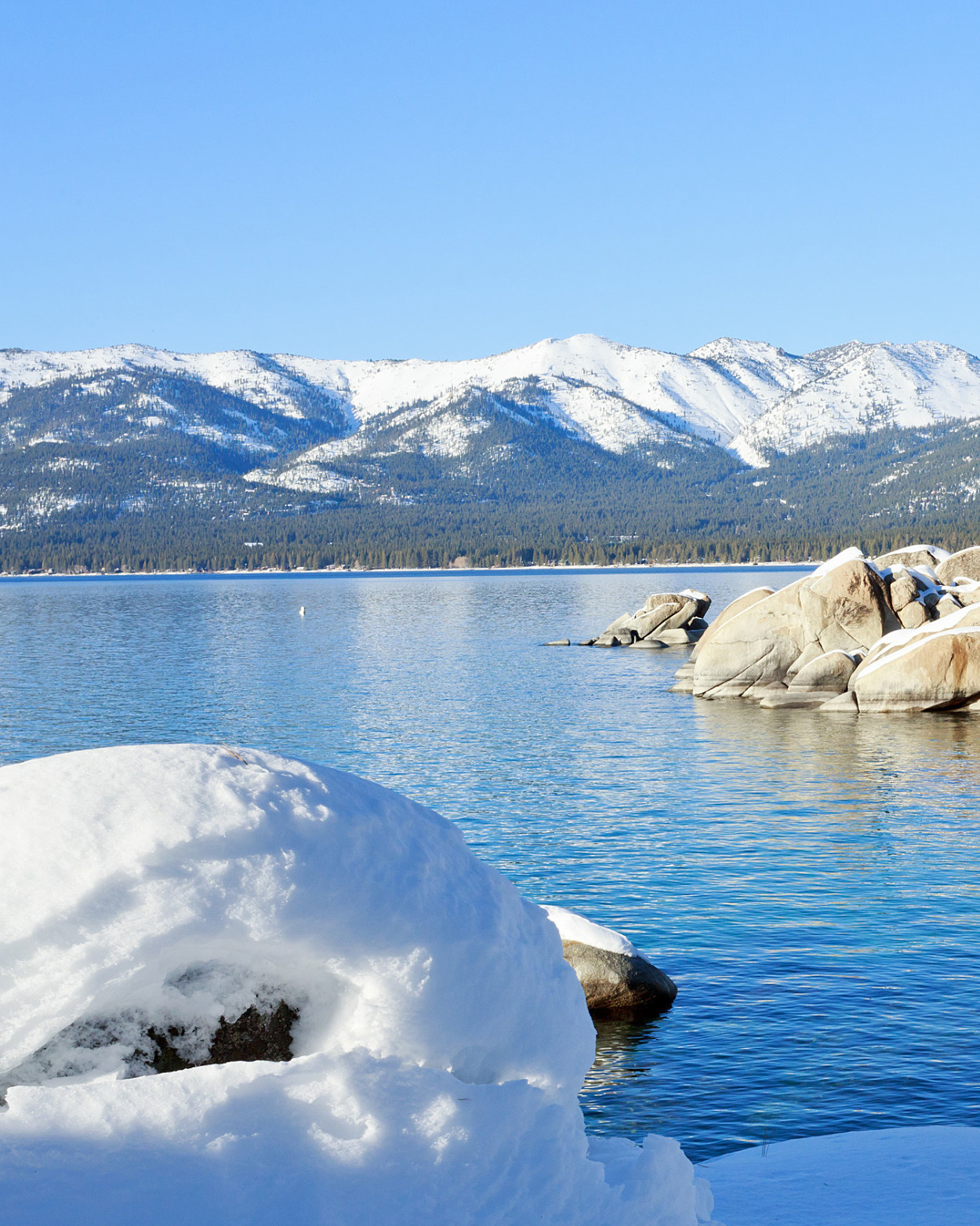 lake-tahoe-california-1115.jpg