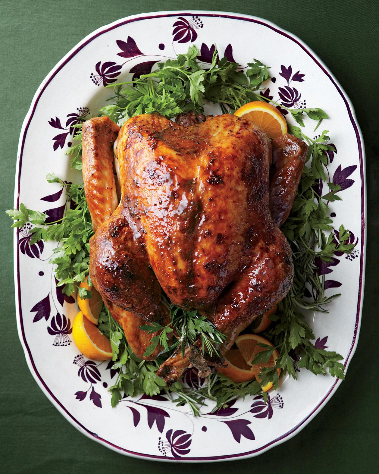 thanksgiving-turkey-med107616.jpg