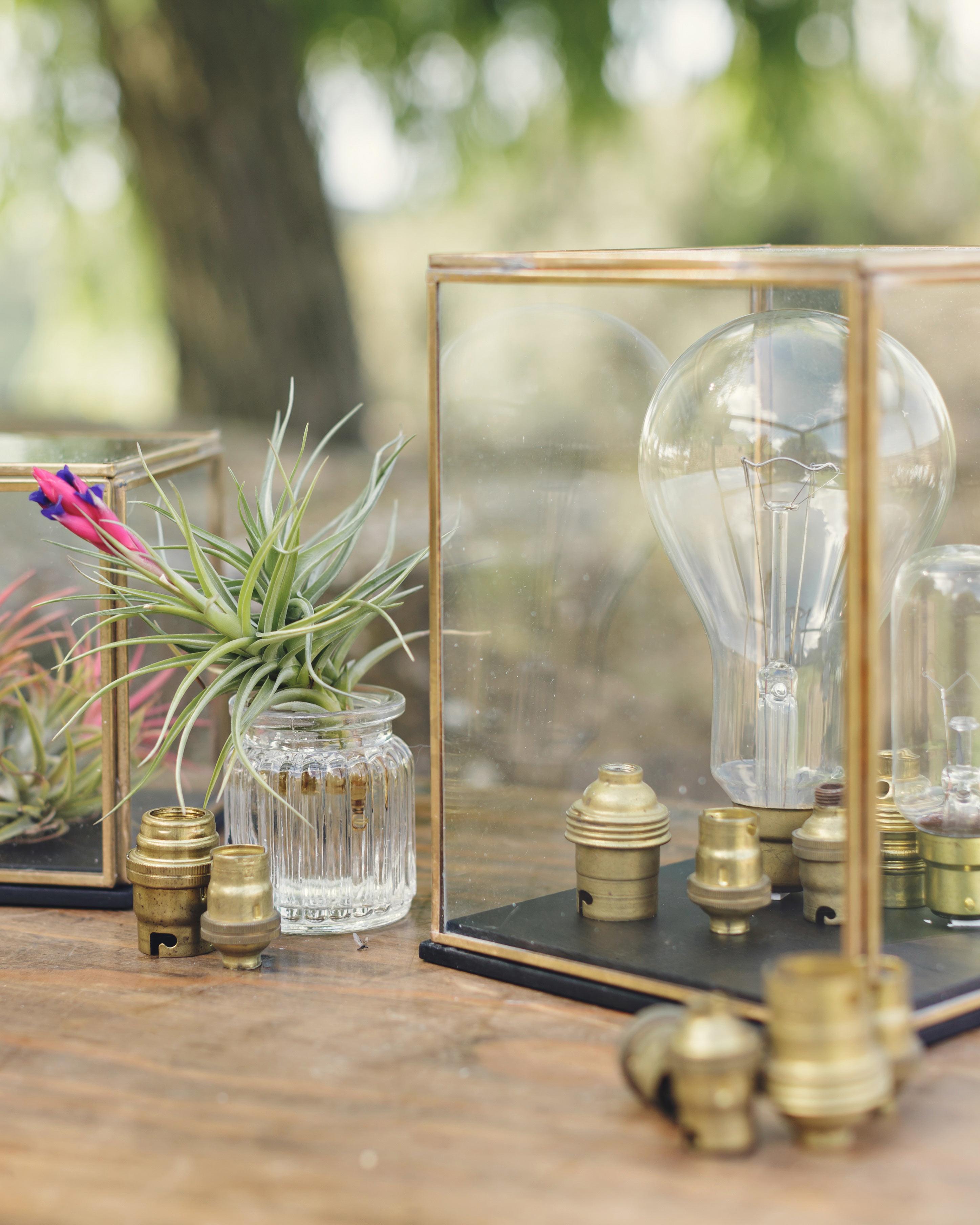 anna-ania-wedding-bulbs-031-s112510-0216.jpg