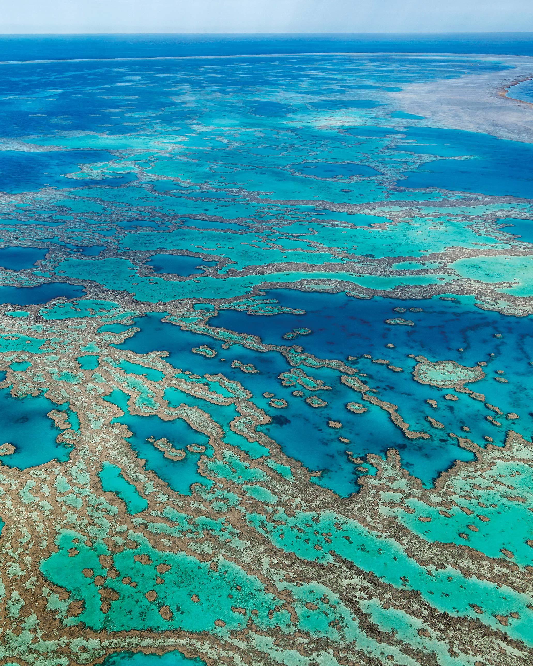travel-honeymoon-diaries-great-barrier-reef-australia-s112934.jpg