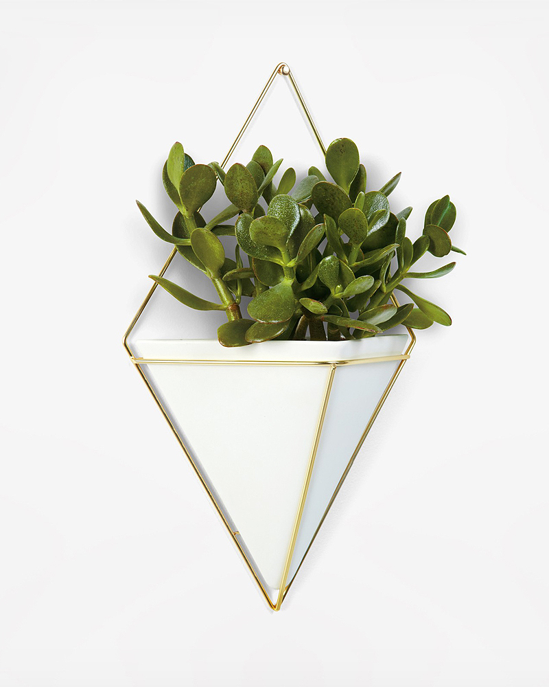 zola-registry-umbra-trigg-large-wall-planter-vessel-whitebrass-0616.jpg