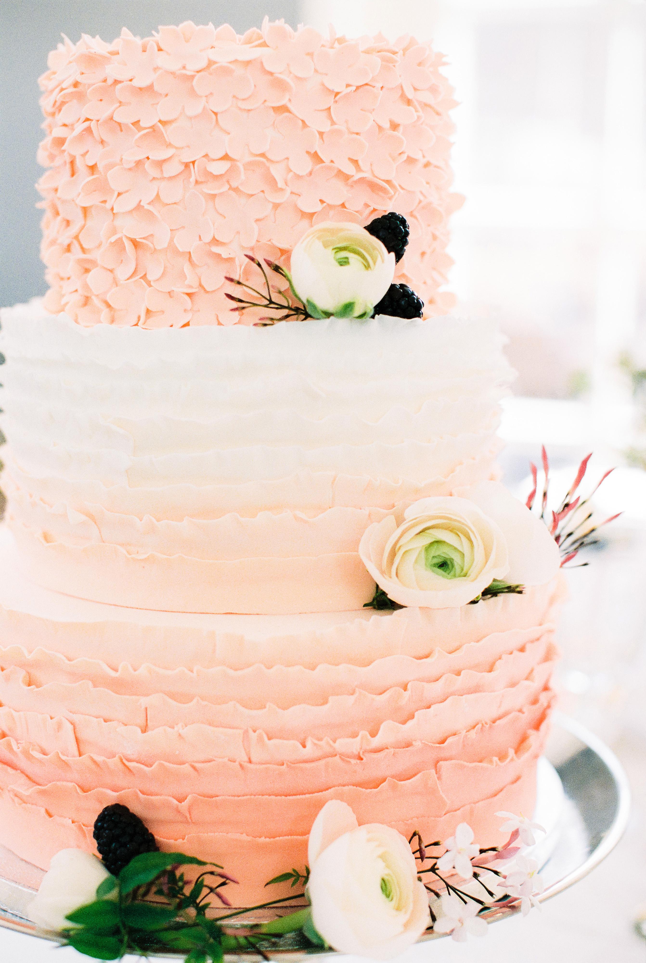 ombre cakes anouschka rokebrand