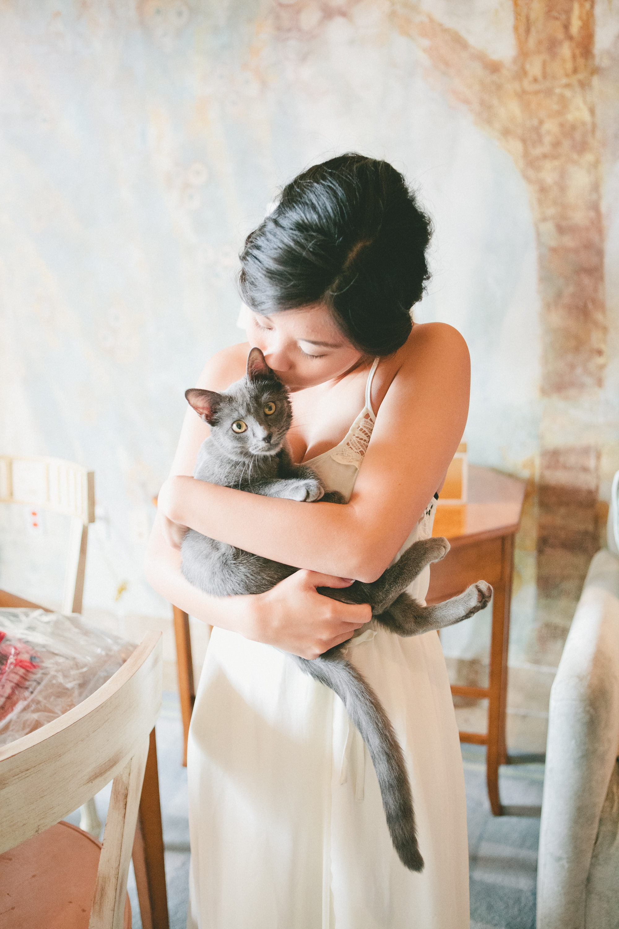 cat wedding guest