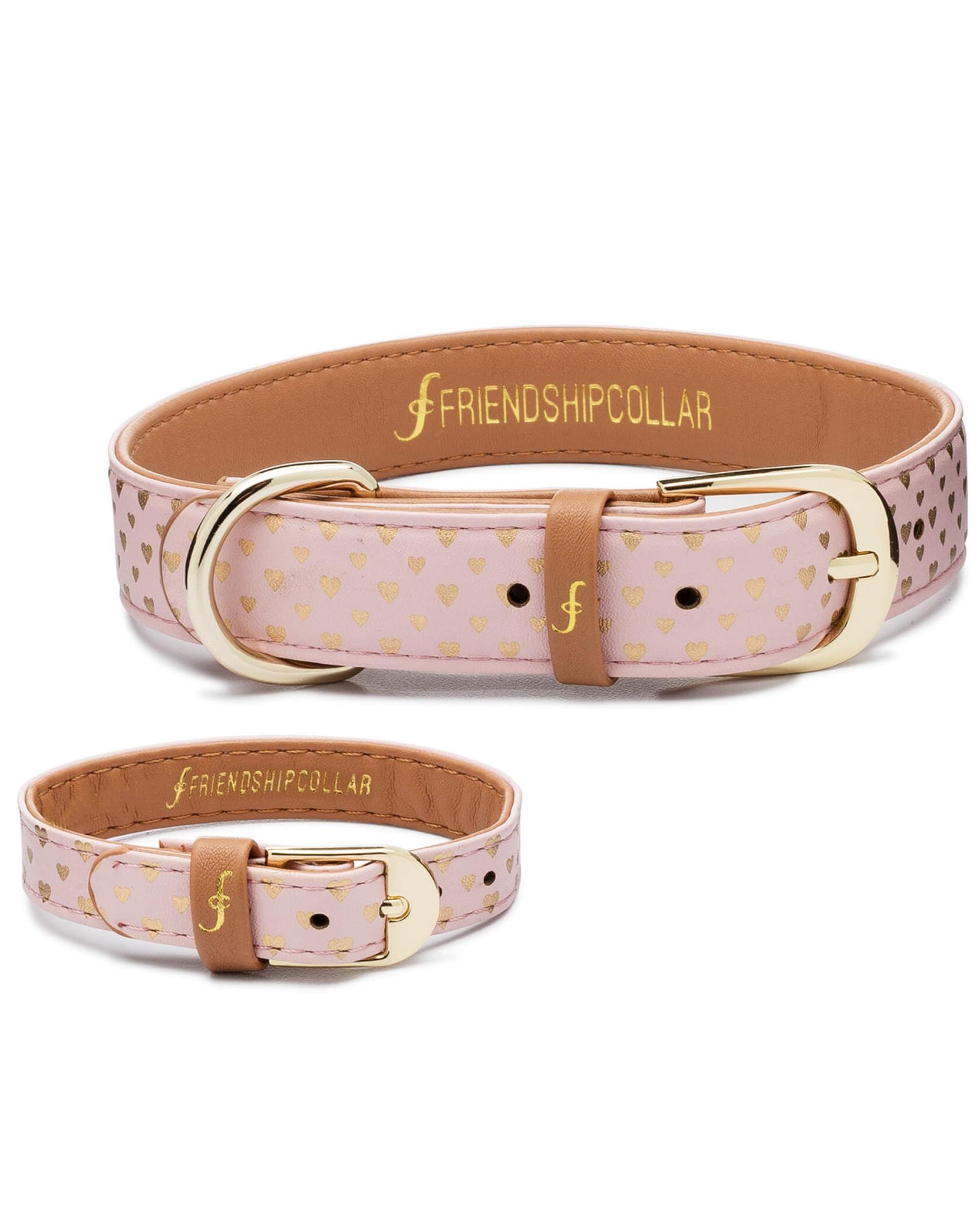 friendship puppy collar