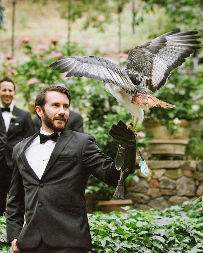 shannon jon wedding hawk