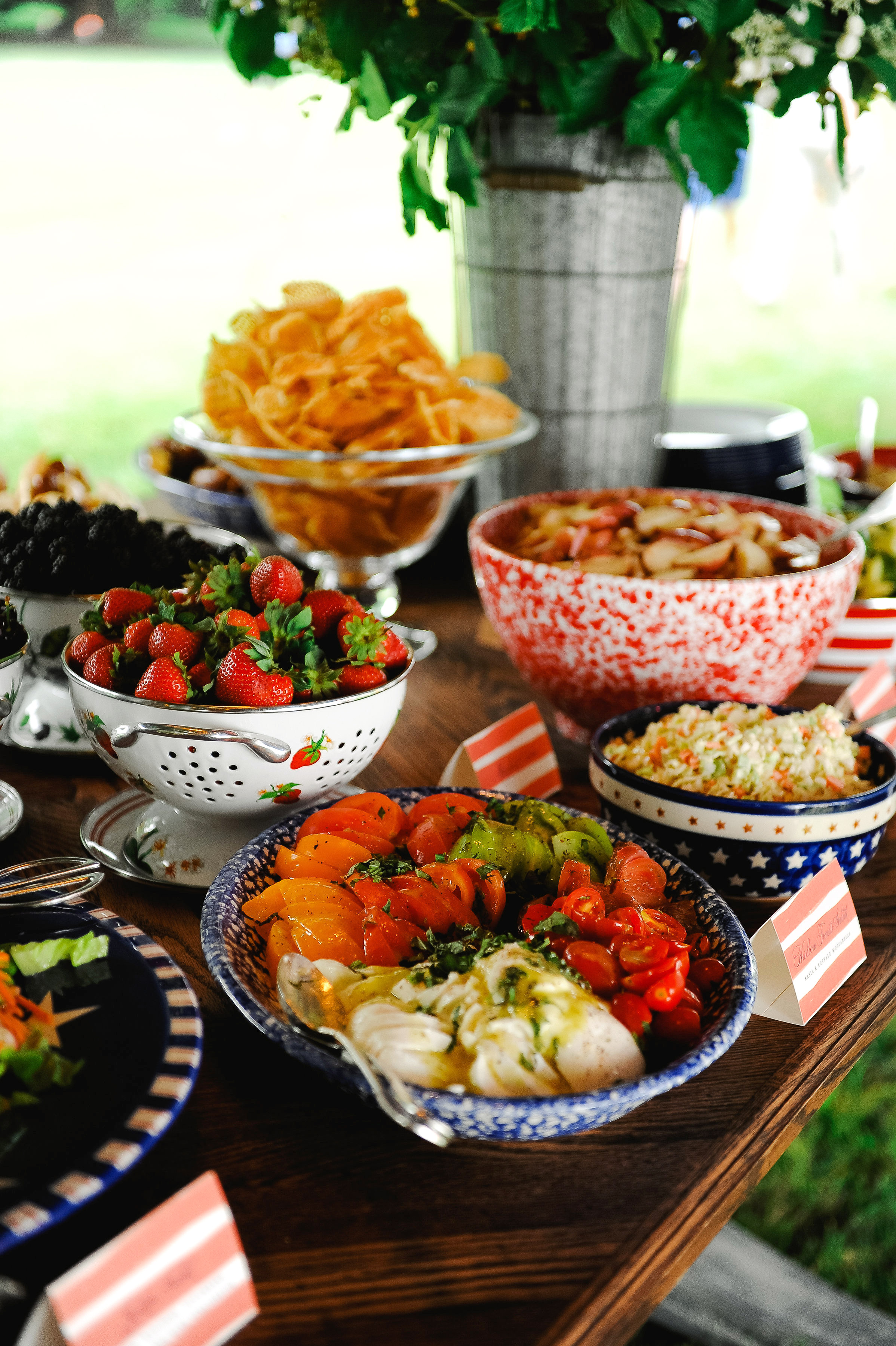 patriotic party snacks buffet