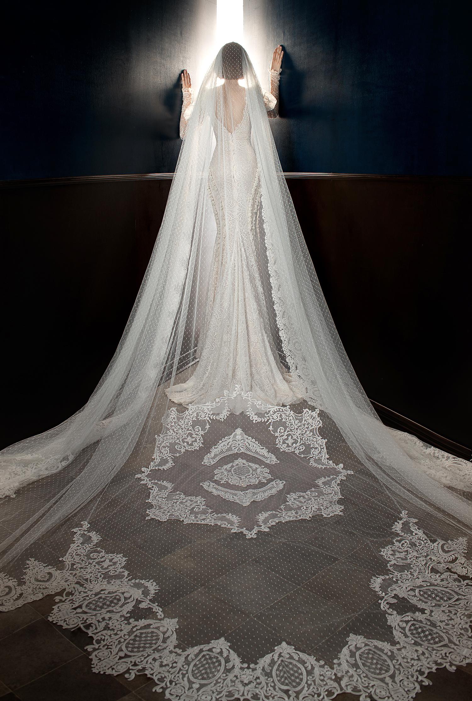 galia lahav wedding dress spring 2018 long sleeves mermaid veil back