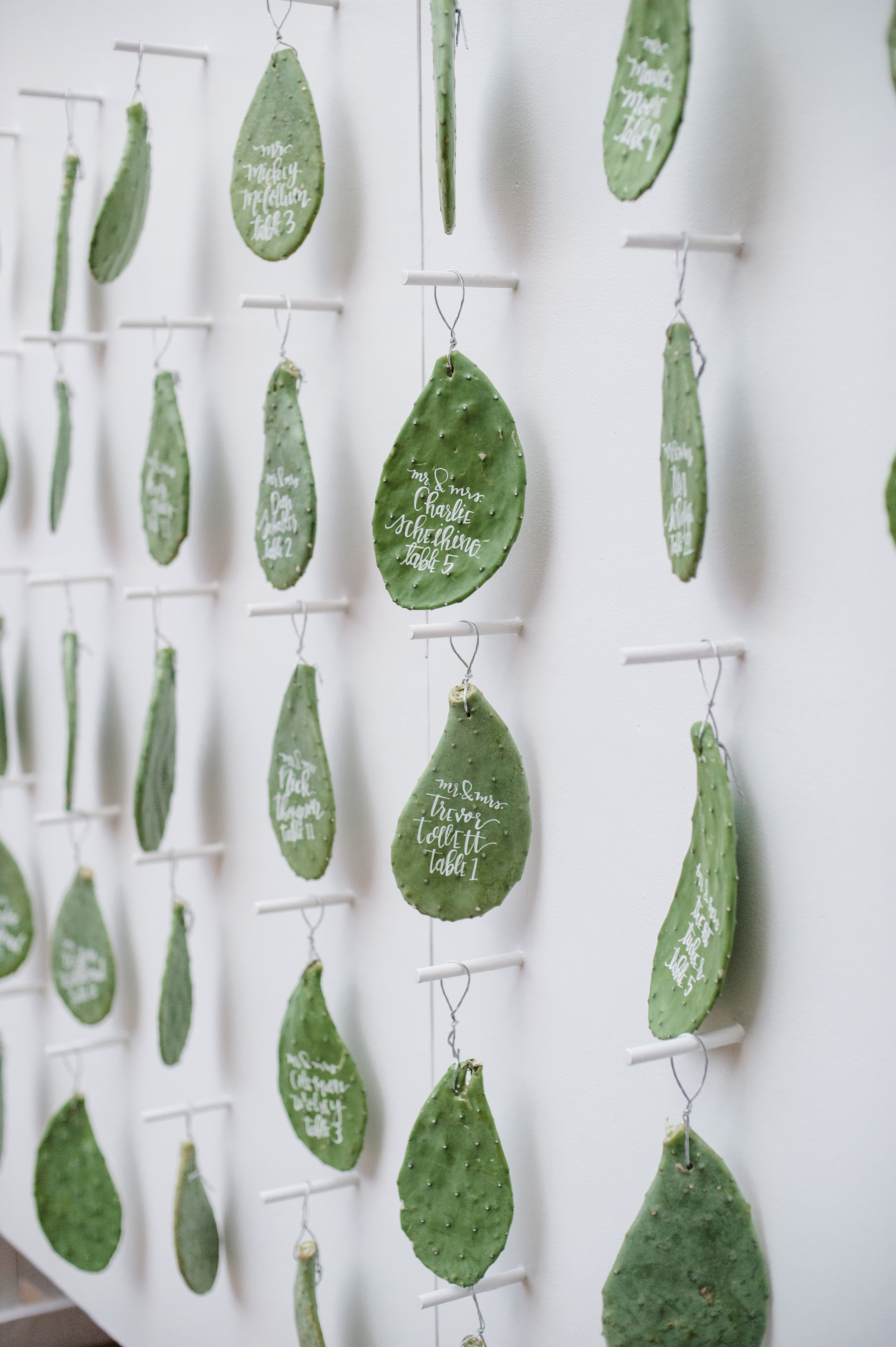 Hanging Cactus Escort Cards
