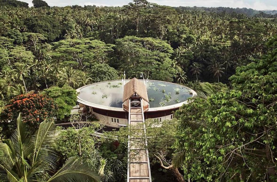 jungle luxury retreat