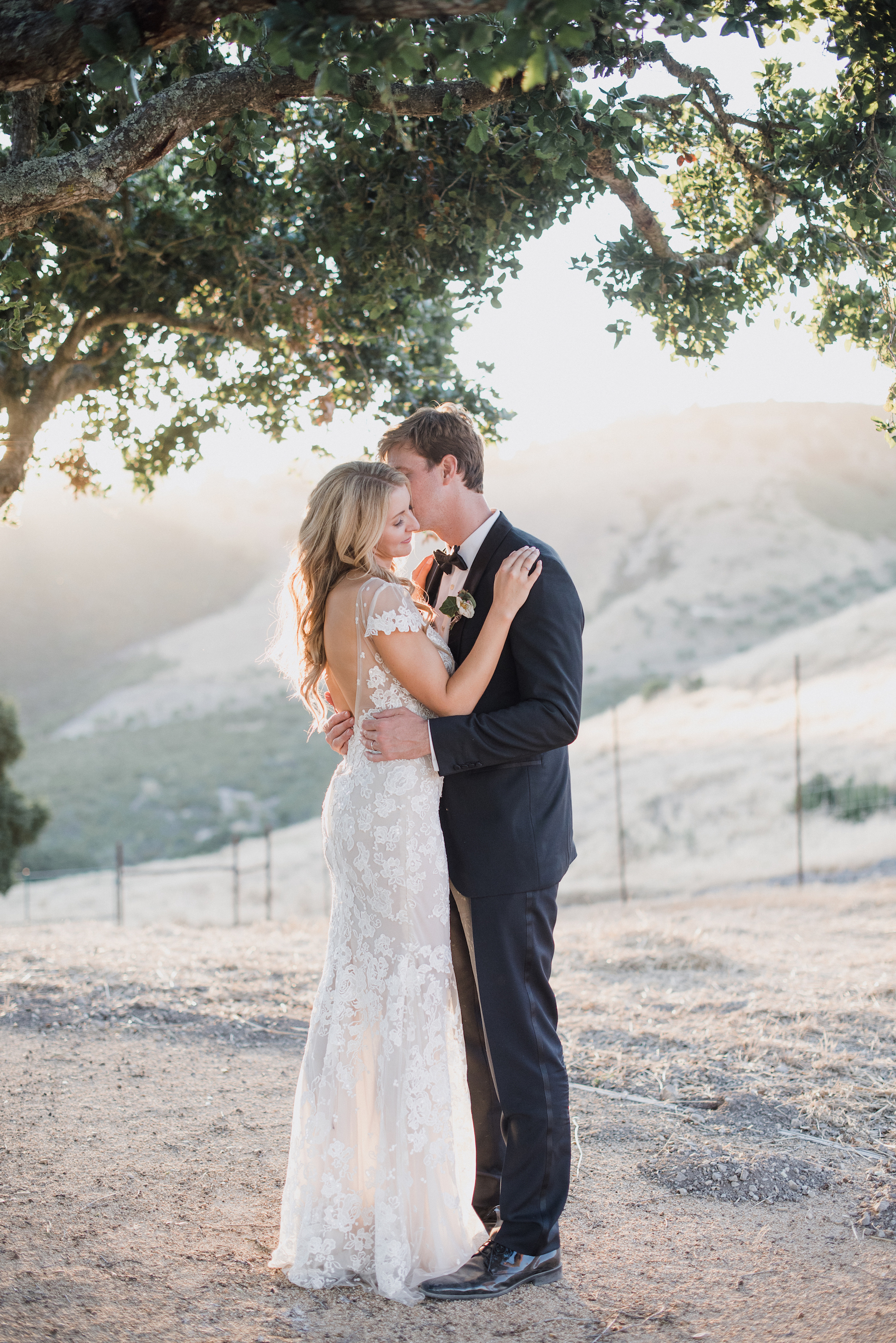 A Romantic Wedding Photo of a Couple Kissing Under a Tree