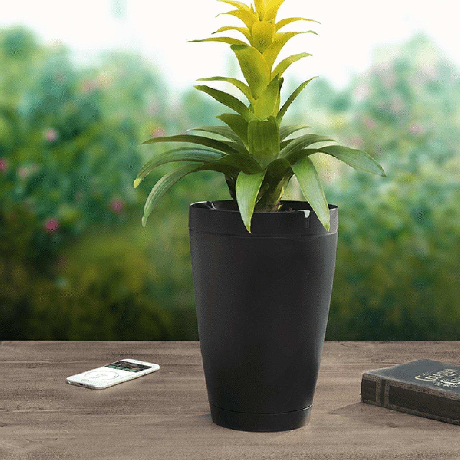 self watering smart pot