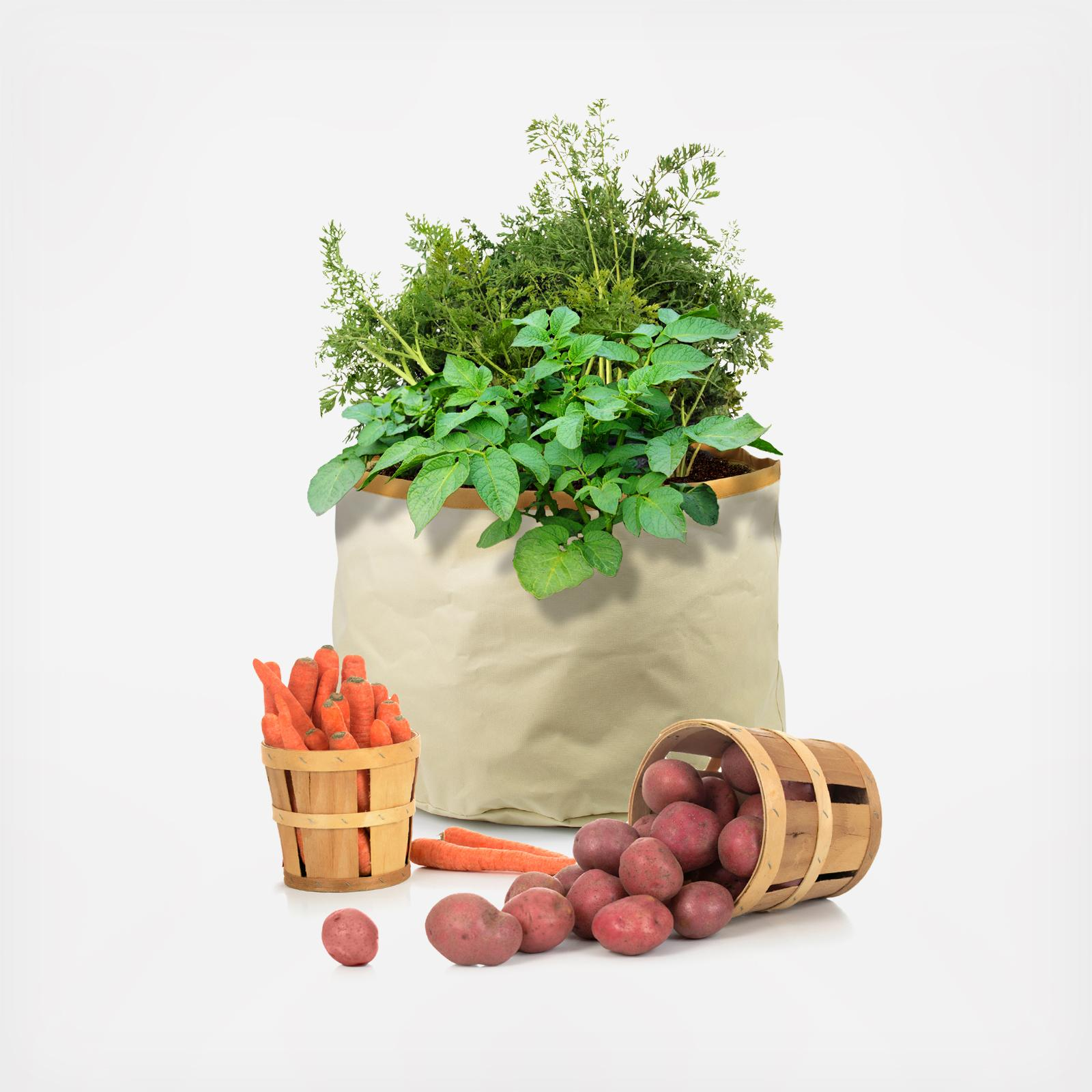 architec bag vegetables