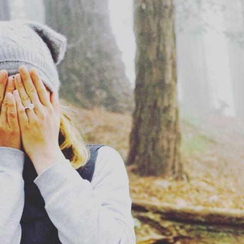 Emily VanCamp and Josh Bowman's Instagram engagement announcement
