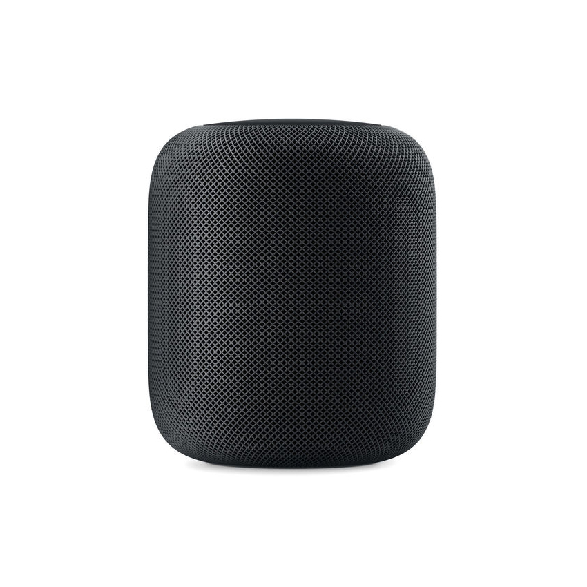 First Married Holiday Gift, Apple Homepod