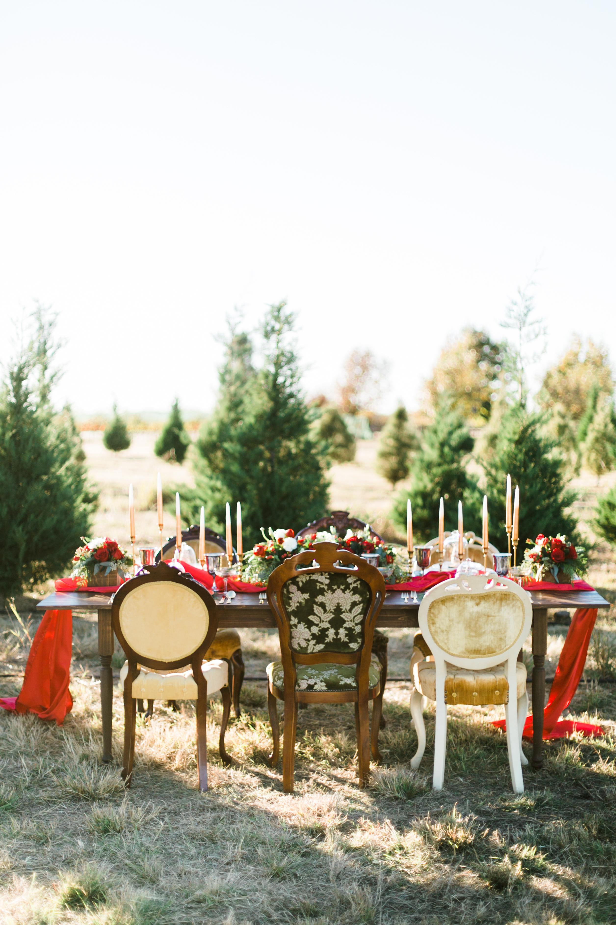 table christmas tree farm