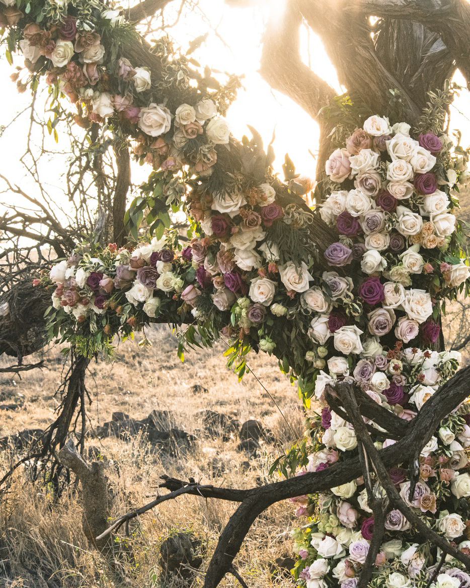 grant lance wedding africa flower tree