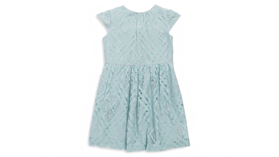 """Burberry """"Ramona"""" Lace Dress"""
