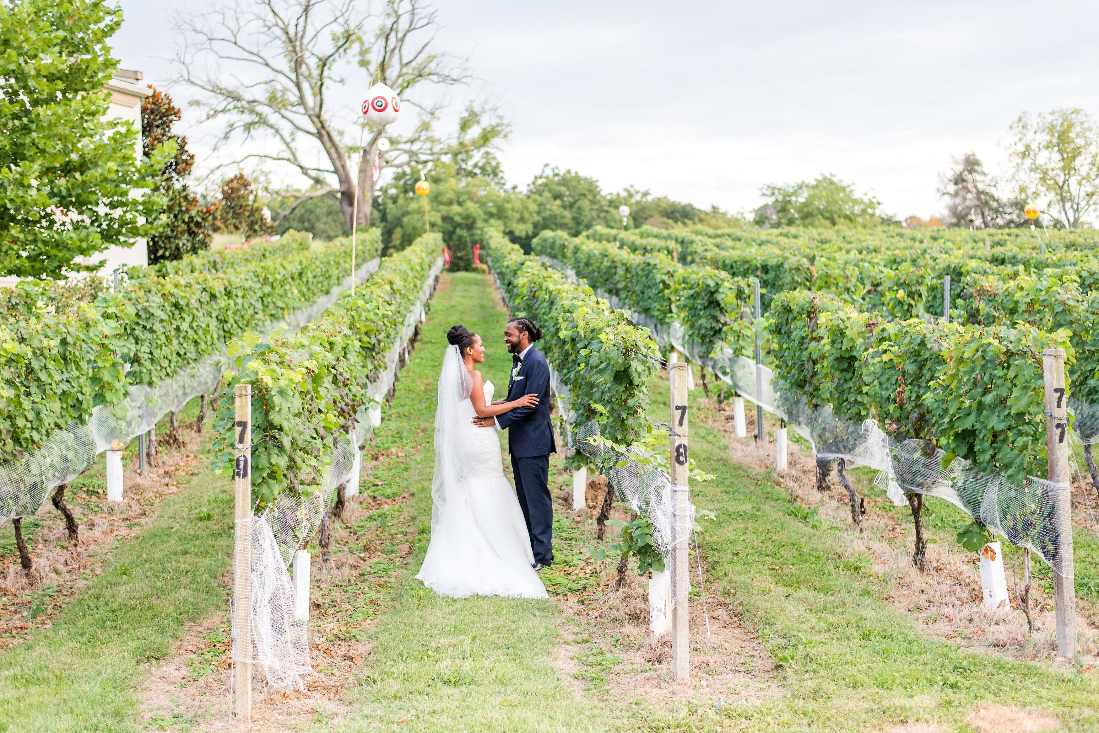 kenisha wendall vineyard portrait rows vines