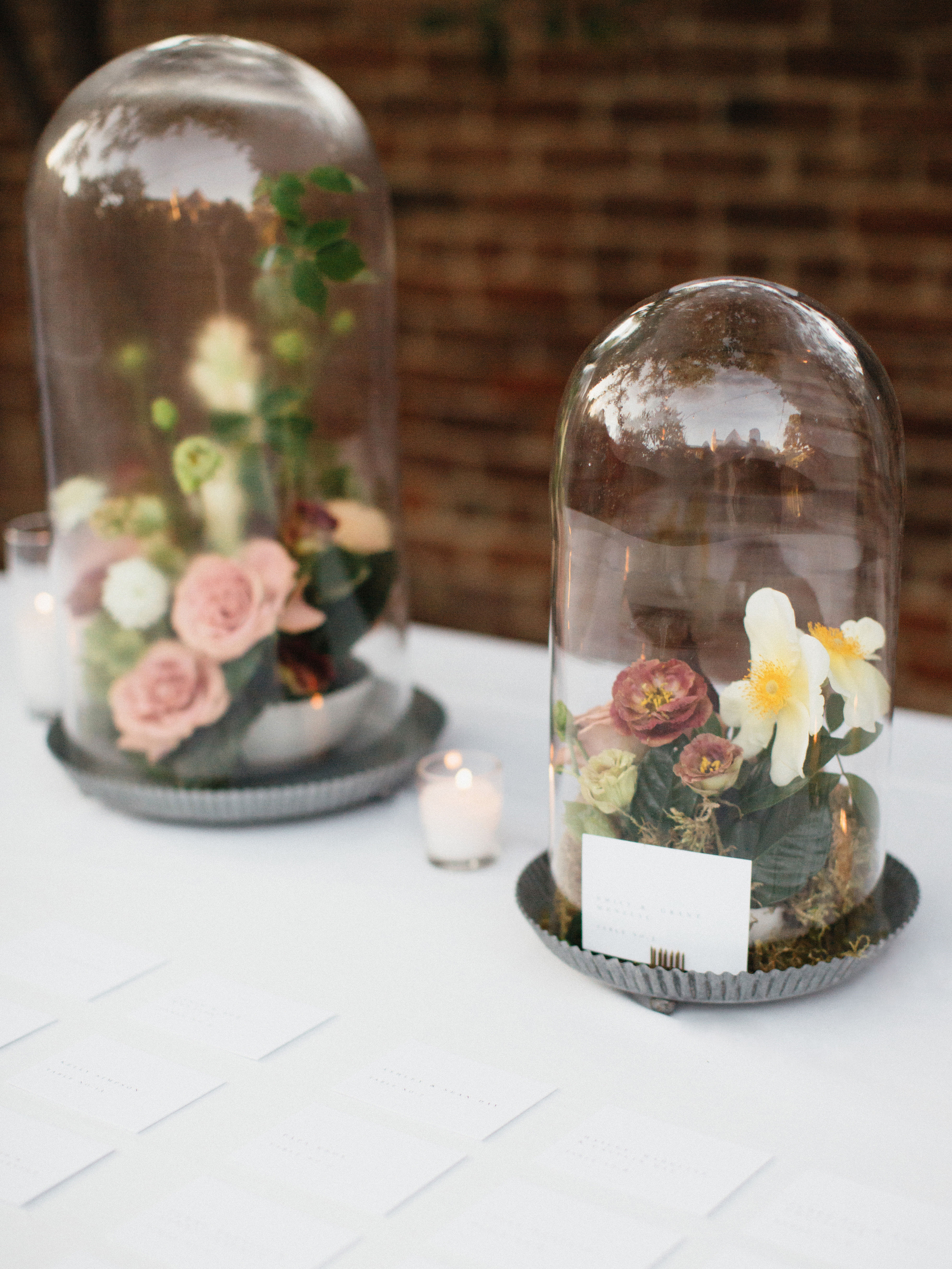 Cloche Terrariums