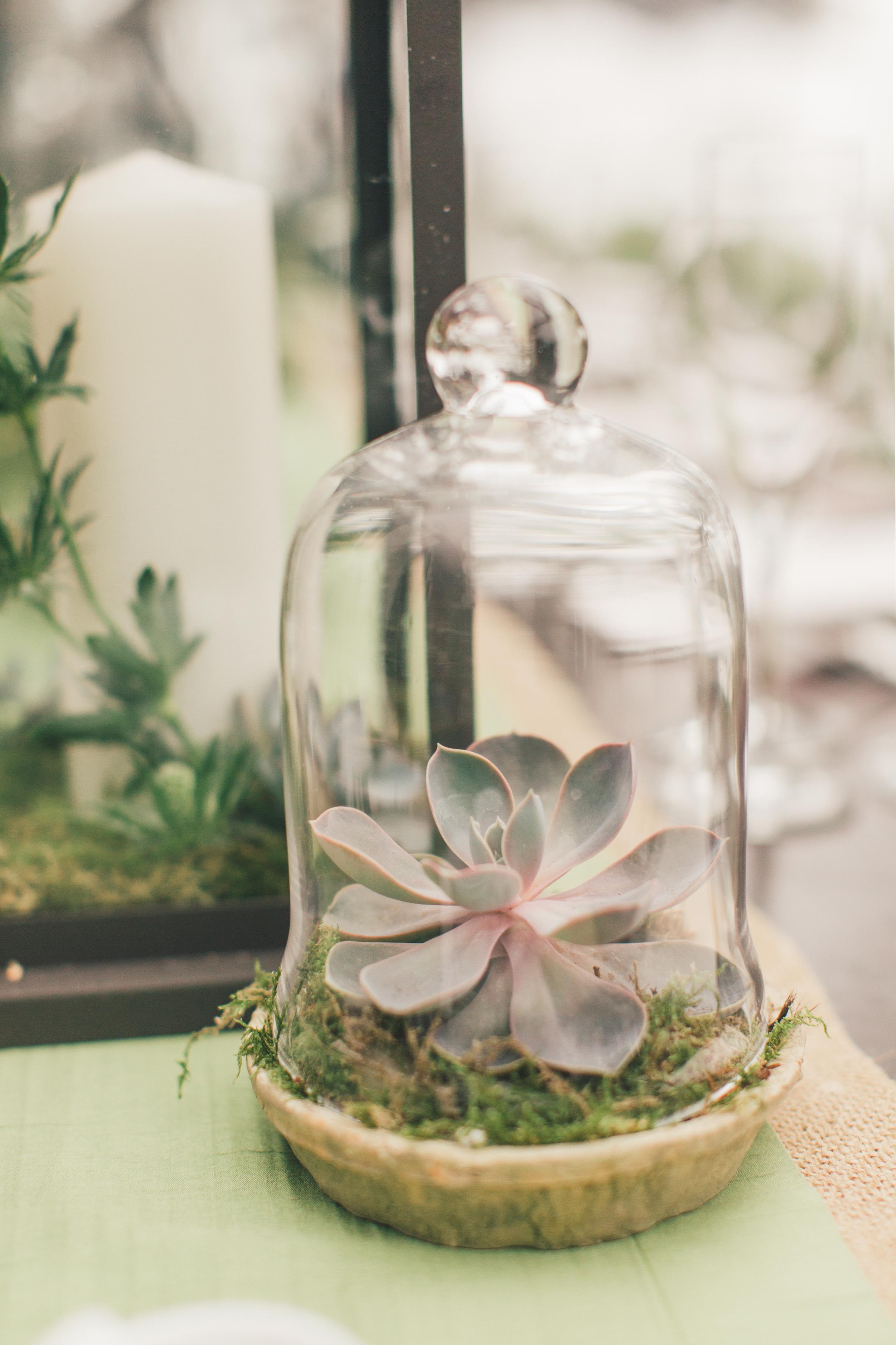 4bbdf434bada5 16 Creative Ways to Use Cloches Throughout Your Wedding | Martha ...