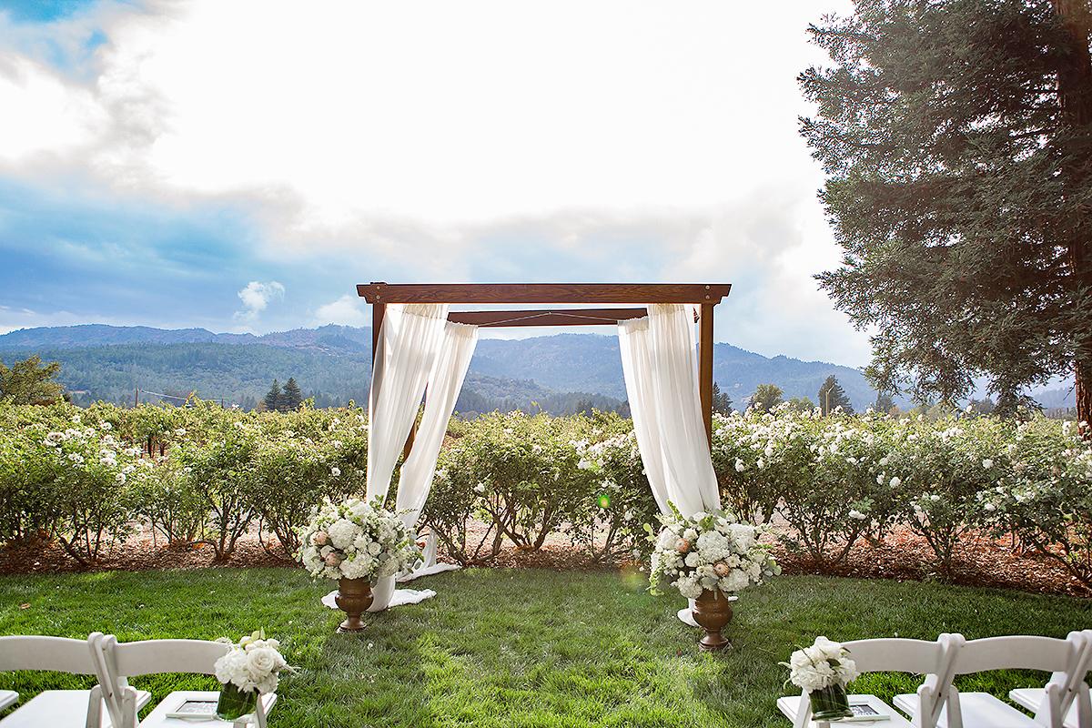 modern wedding natural outdoor setting