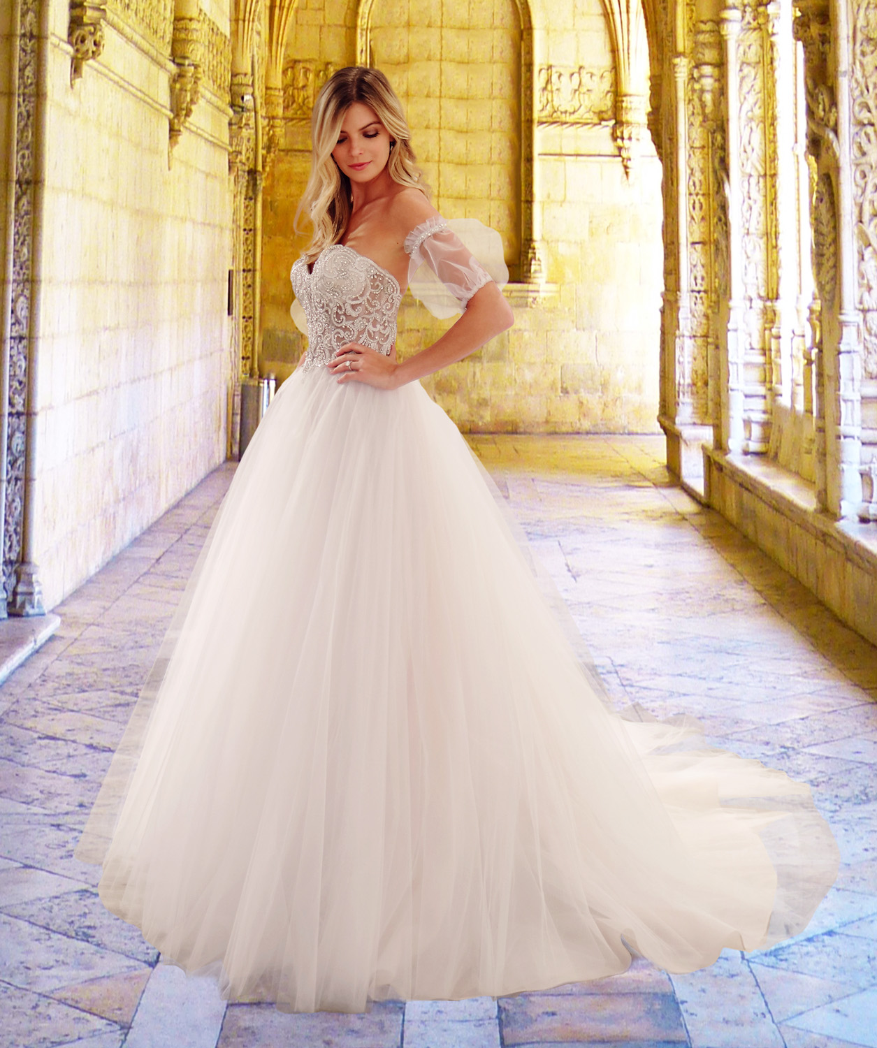 Eve of Milady wedding dress spring 2019 sweetheart tulle ballgown