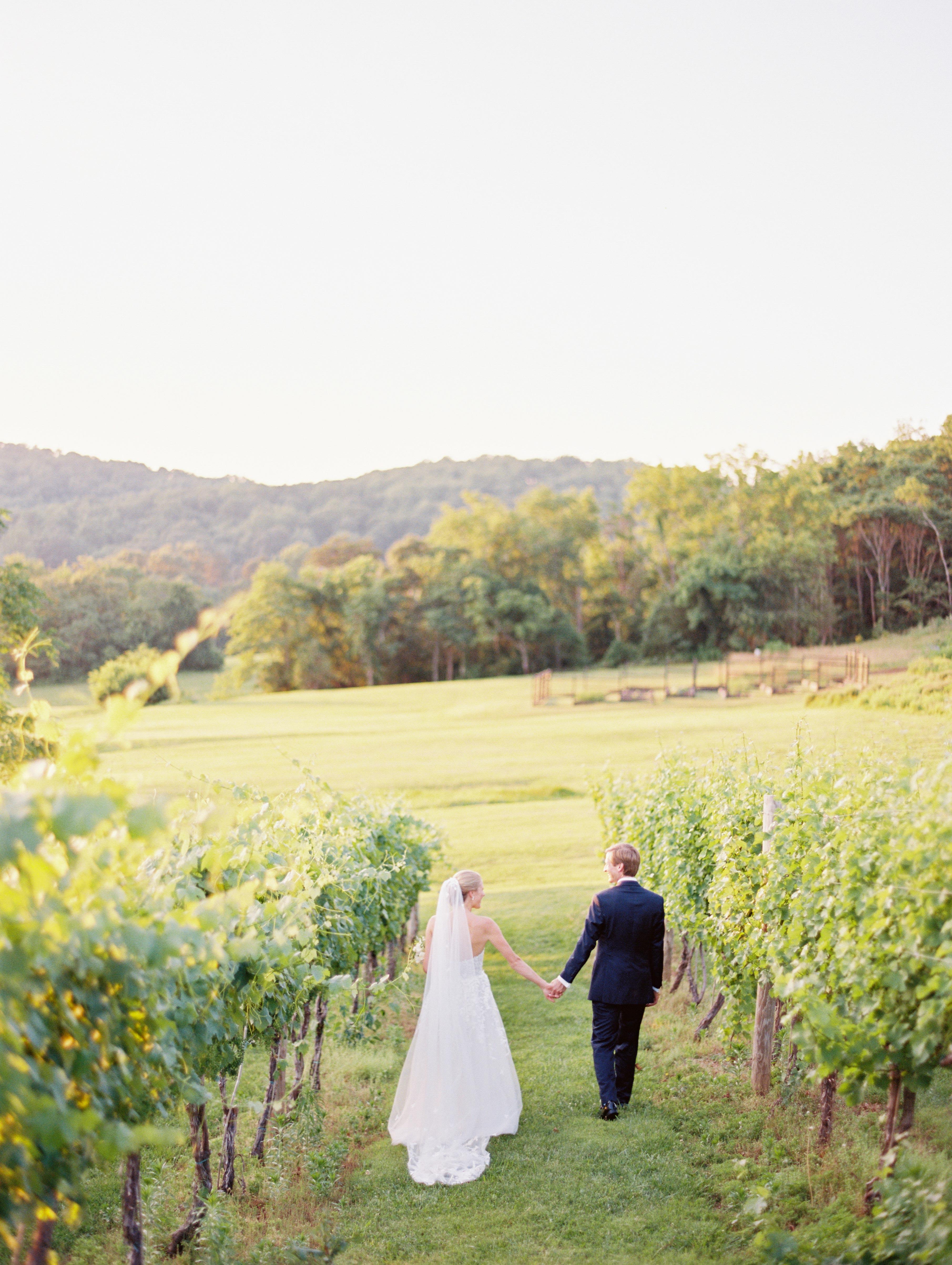 hannah chris wedding north garden va couple holding hands
