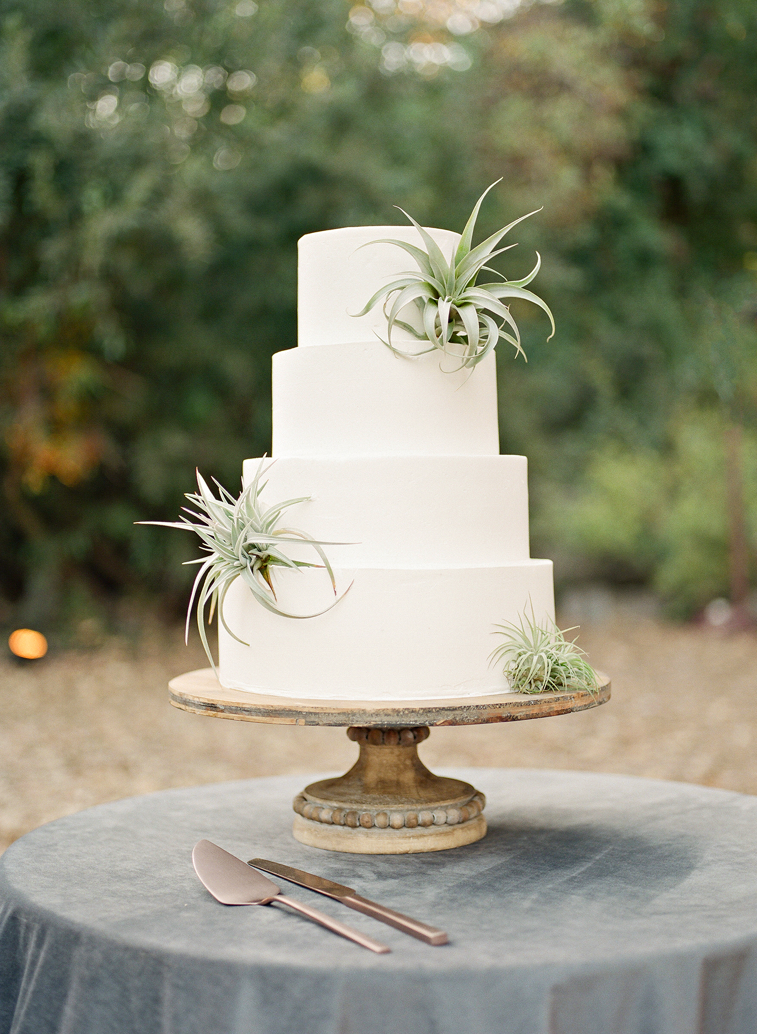 Emma mike California wedding Corbin gurkin cake