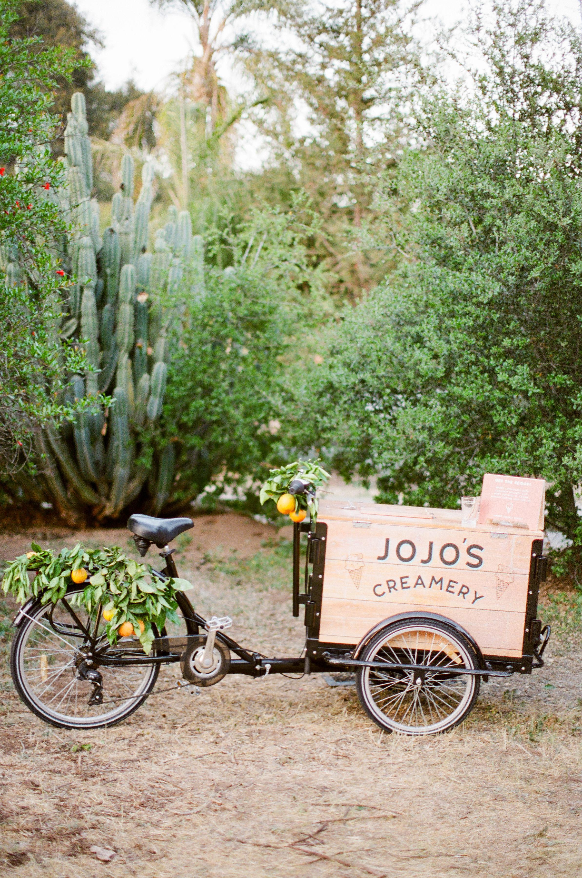 Tenley molzahn taylor leopold wedding icecream cart