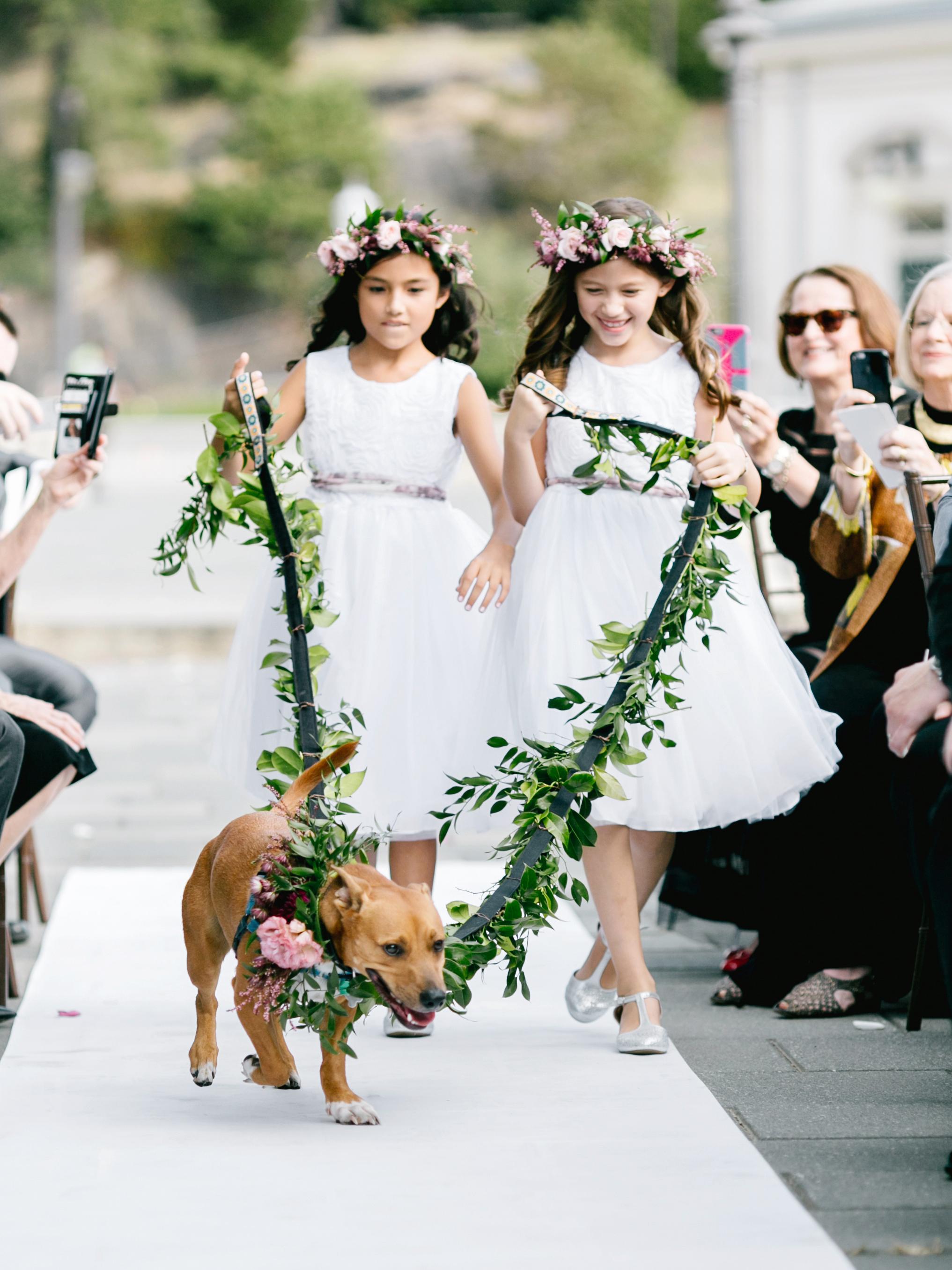 dog wedding flower girls greenery leash aisle