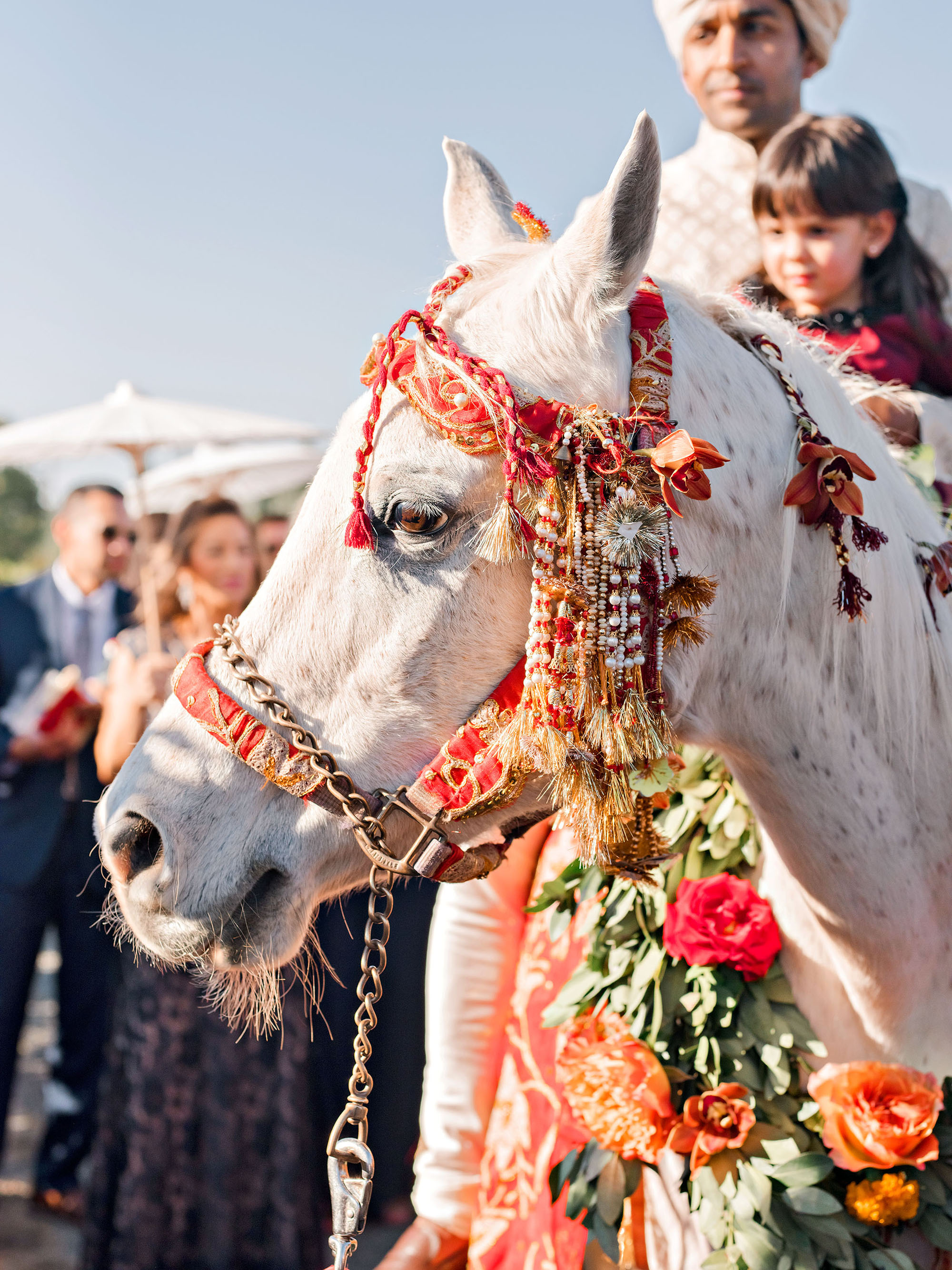 jenna alok wedding wine country california baraat horse