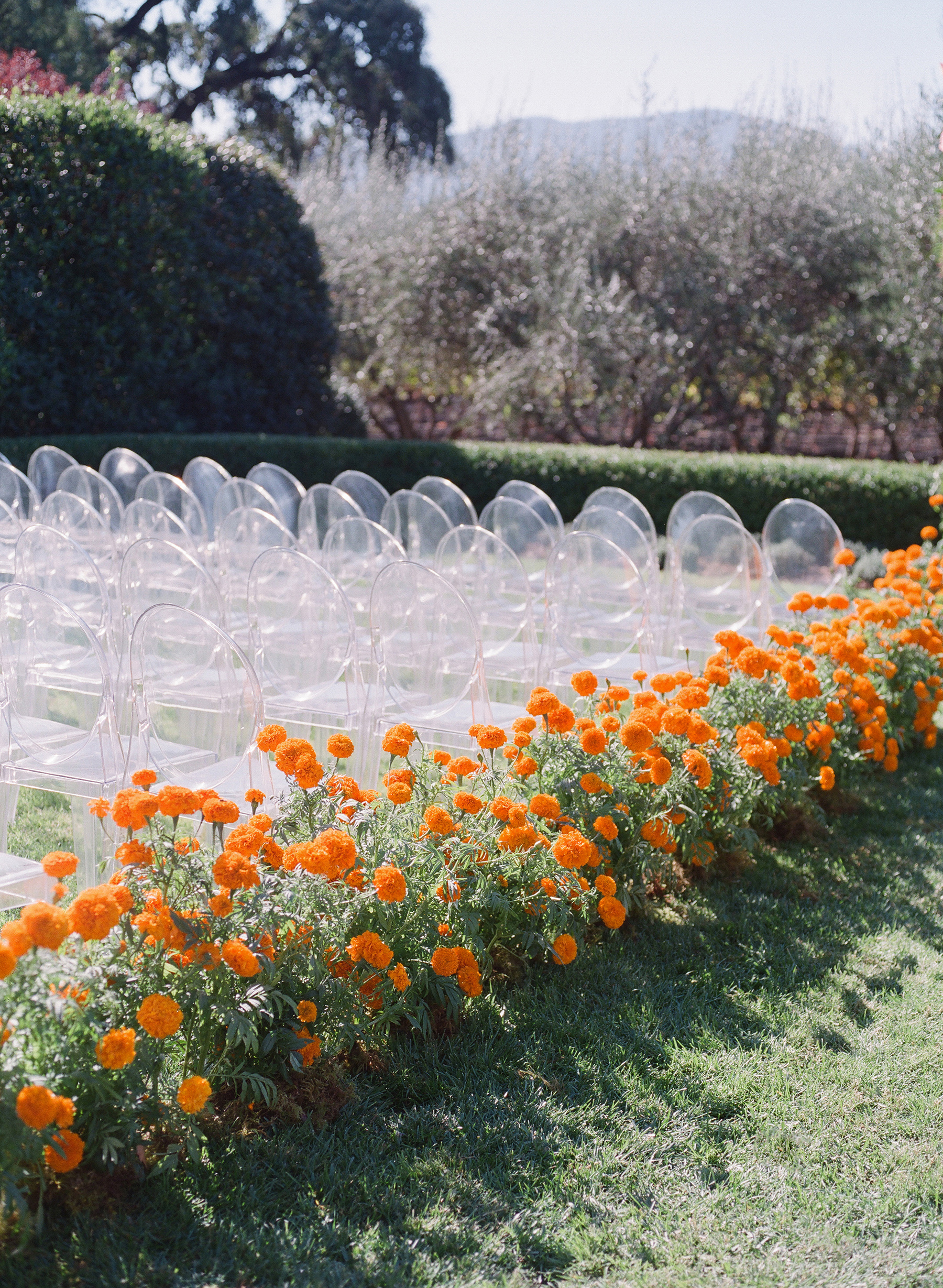 jenna alok wedding wine country california marigolds aisle