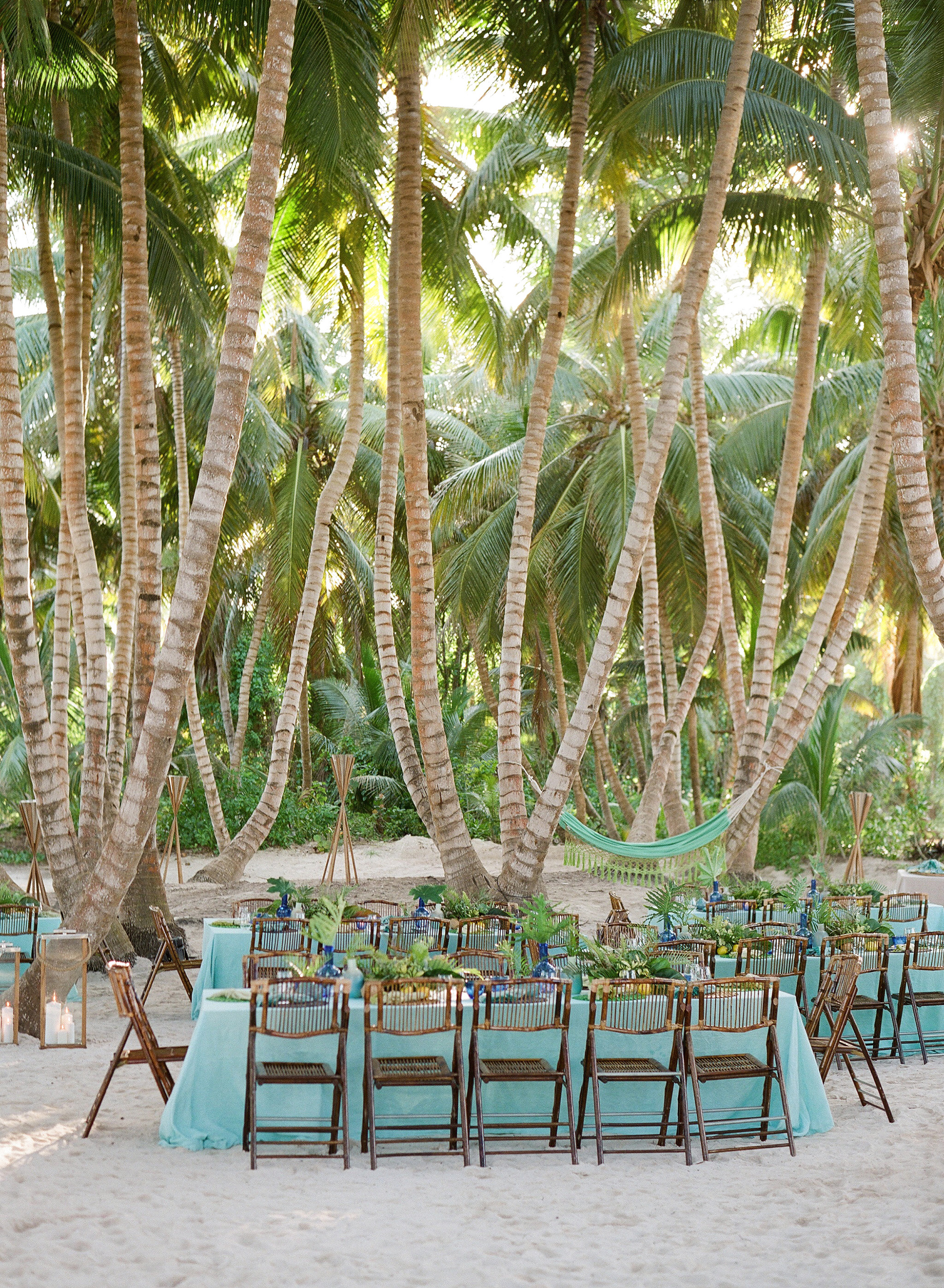 Dinner Among the Palm Trees