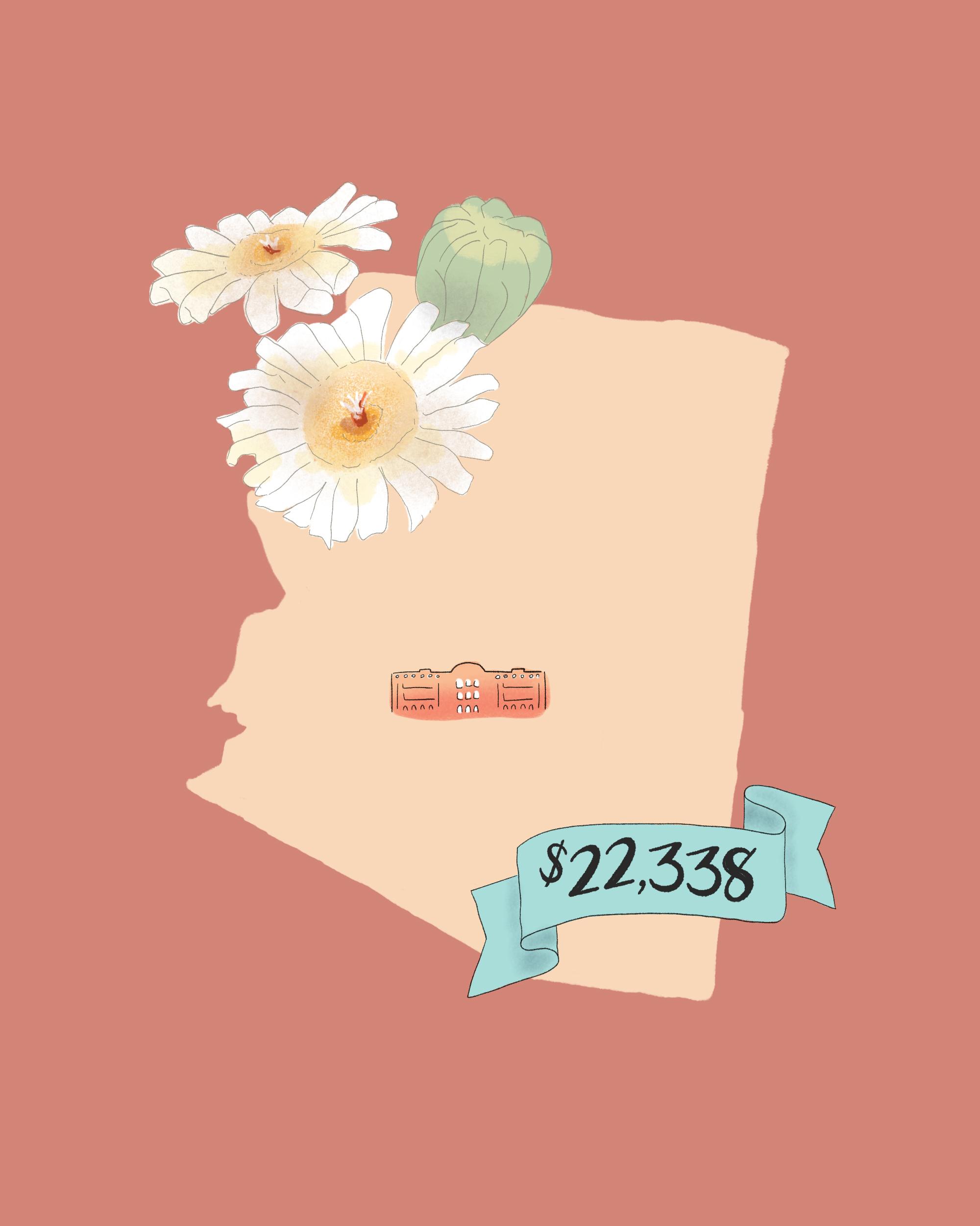 state wedding costs illustration arizona