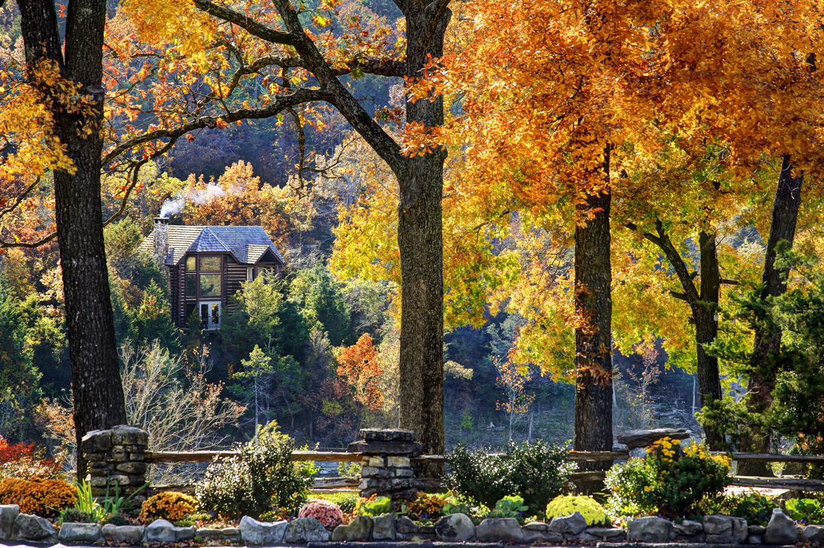 cedar lodge within fall foliage
